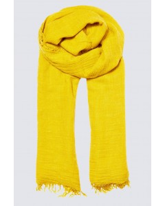 Scarf - June to July - Buttercup